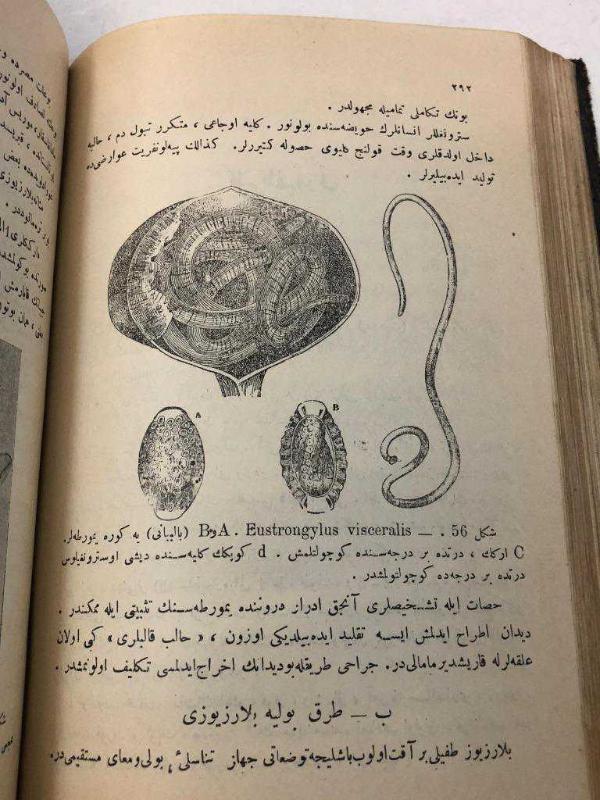 Turkish book2.JPG